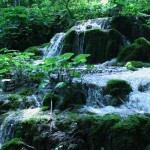 Plitvice Lakes, in Pictures