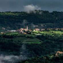 Small hilltop down in Istria surrounded by vineyards
